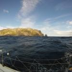 Ciao Baby Tasman Island